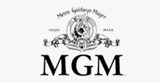 MGM Studios Nathan Stevenson - Nubrand Media Creative Director